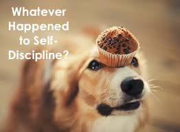 Whatever Happened to Self-Discipline?