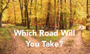 Which Road Will You Take?