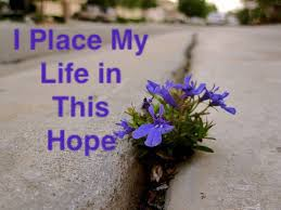 I Place My Life in this Hope