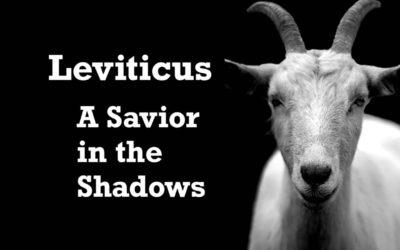 Leviticus – A Savior in the Shadows